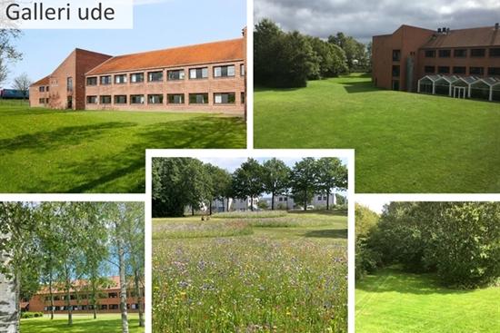 10 - 60 m2 kontorfællesskab i Tranbjerg J til leje