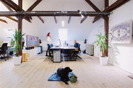 10 - 4600 m2 kontorfællesskab, kontor i Odense C til leje